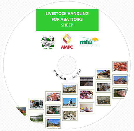 Livestock Handling for Abattoirs - Sheep